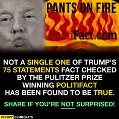 Image result for trump the liar and loser