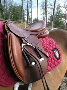 she made a gryffindor saddle pad. so freaking adorable.