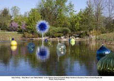 "Dale Chiluly -   ""Blue Moon"" and ""Walla Wallas"" in the Heckman Pond at Frederik Meijer Gardens & Sculpture Park, Grand Rapids, Michigan.  Photo:  Paula Anderson - blown glass"