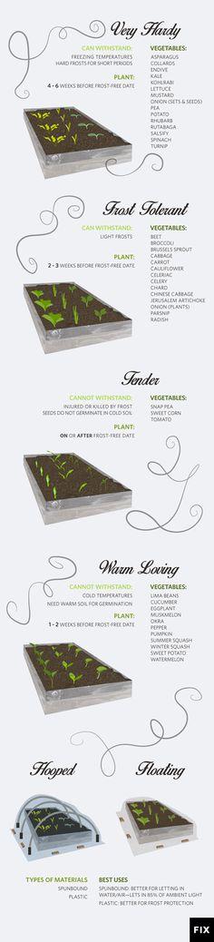 Plant Hardening: 9 Steps to Harden Off Seedlings | Fix.com