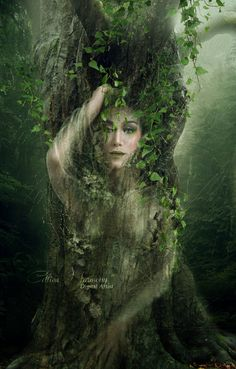 "Nature: ""The by Celtica-Harmony, at deviantART. Elfen Fantasy, Fantasy Art, Image Pinterest, Scott Cunningham, Tree Woman, Nature Spirits, Spirited Art, Montage Photo, Fairy Art"