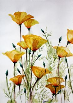 Spectacular art prints available of original floral watercolor paintings by Singhroha Art. Liven up your walls with these vibrant hues. Watercolor Poppies, Watercolour Painting, Watercolor Journal, Watercolors, Art Floral, Art Tumblr, Art Aquarelle, Watercolour Tutorials, Watercolor Flowers Tutorial