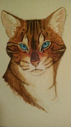 Warrior Cats With Eyes Like a Hawk by Zann-Taggerung