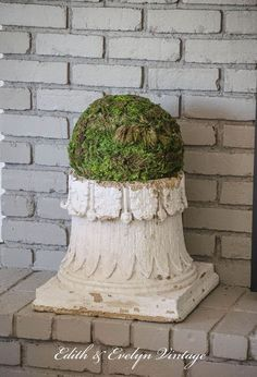 Make Your Own Moss Balls