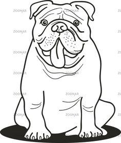 bulldog coloring pages bulldog for coloring book