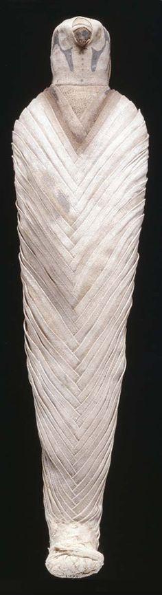 Hawk mummy from Egypt.
