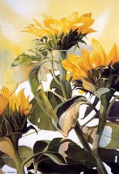 Siv Spurgeon watercolor paintings are known for its transparency. Art Aquarelle, Watercolor Sunflower, Sunflower Art, Watercolour Painting, Watercolor Flowers, Painting & Drawing, Painting Flowers, Watercolors, Floral Paintings