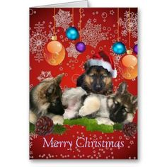 Merry Christmas from the Shepherds Card