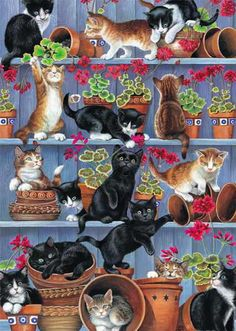 Many cats paintings. Flower Pots - Chrissie Snelling