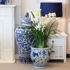 Blue and White …