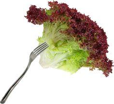 Comprar lollo rojo en www.jalarico.com