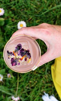 Rose Picnic in the Park: Hangar 1 Vodka, elderflower, rosewater and lemon
