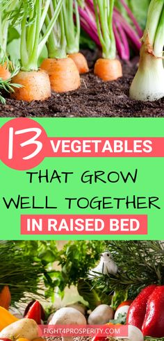 Backyard Vegetable Gardens, Container Gardening Vegetables, Veg Garden, Vegetable Garden Design, Planting Vegetables, Lawn And Garden, Plants For Garden, Vegetables To Grow, Raised Vegetable Garden Beds