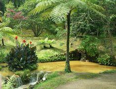Furnas, Azores: Pura Naturaleza Azores, Jewel, Nature, Garden, Lakes, Saint Michael, Rodeo, Thermal Baths, Hiking Trails