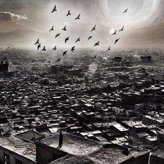 . Instagram Website, Facebook Instagram, Field Notes, Fields, Afghanistan