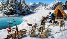 Gardens of Time | Dog Sledding