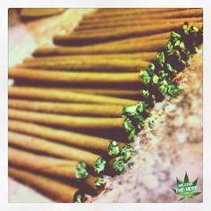 #blunted #marijuana