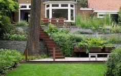 corten steel steps and patio Landscape Elements, Landscape Architecture, Back Gardens, Outdoor Gardens, Contemporary Garden Design, Shops, Corten Steel, Terrace Garden, Garden Projects