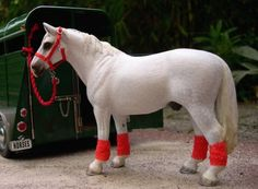 On the road with you Schleich horse! #Jupinkle