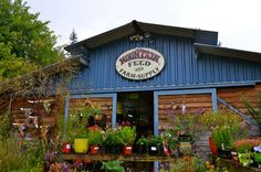Mountain Feed and Farm Supply - Ben Lomond, CA.       Went here today! Wow! What a place!