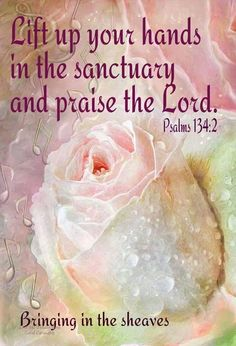 PSALM 134:2. Lift up your hands in the sanctuary and praise the LORD.