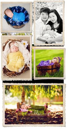 Inspiration For New Born Baby Photography : outdoor newborn photography. new born in miniature bed