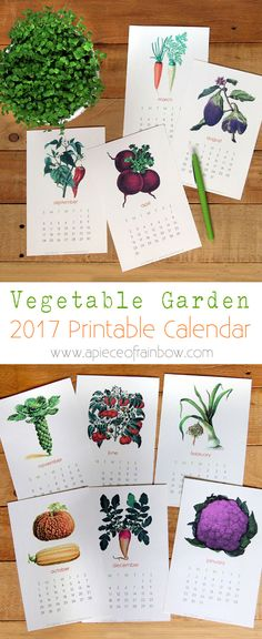 A set of printable 2017 vegetable garden calendar with beautiful vintage illustrations! Use as wall or desk calendar. Great gift for garden and art lovers! - A Piece Of Rainbow