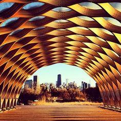 Chicago - Nature Boardwalk