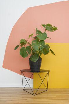 comment peindre un mur en couleurs pastels, petite table basse et pot de fleur avec plante verte