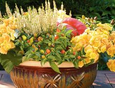 Fall Color and Texture....I would love to do this but the bunnies would use it as a salad bar!