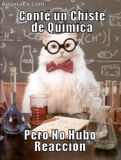 AnsinaEs.com | un chiste de química #learn #spanish #jokes