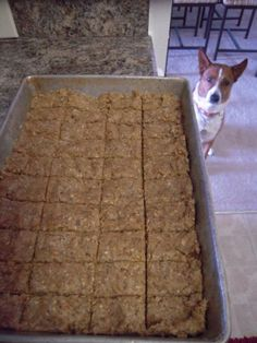 Leftover beer grain dog biscuits. Made with grain after brewing a batch of beer at home.  ***Important: Want to reiterate like in the directions; Hops are bad for dogs to digest.  Use only hop free grain.