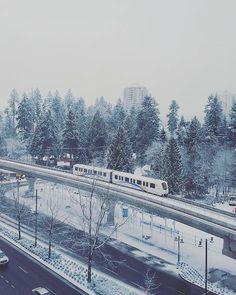 Another batch of snow today and I'm off work! YIPEE (MEME: The feeling I get when I wake up and I'm off work)  계속해서 눈 내리는 중 그와중에 출근 안해도 돼서 매우 여유로와짐 오늘 뭐 할까  #icaughtskytraininmypicture#snow#snowfall#snowfallwarning#yvr#vancouver#coquitlam#skytrain#winterwonderland#winter#밴쿠버#캐나다#스카이트레인#코퀴틀람#눈#offwork#쉬는날#겨울#방콕할까#나갈까#고민이로다