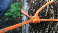 Ultimate Camping Knot via 50 Campfires Rain On Tent, Camping In The Rain, Go Camping, Camping Hacks, Camping Ideas, Best Knots, Campfires, Clothing Hacks, Family Camping