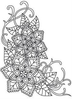 Delicate December - Poinsettias_image
