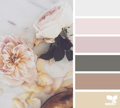 Color palettes - Kleurenpaletten                                                                                                                                                                                 Mais