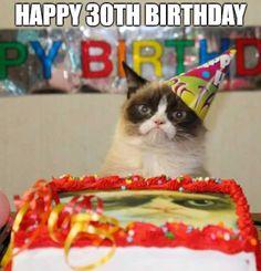 New Funny Happy Birthday Animals Grumpy Cat Ideas