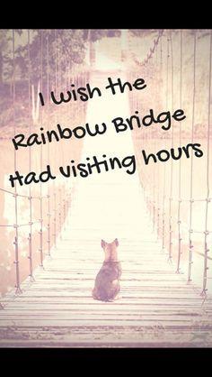 I would surely visit