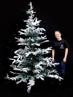 Luxury Snowy Tree - Extra Large