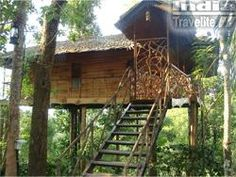 Tranquil Resort - Wayanad - Kerala