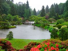 Japanese Garden, UW Arboretum.  We were married here on a misty day in May, 1983.