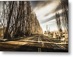 Road Metal Print featuring the photograph Tasmania Scenic Drive by Jorgo Photography - Wall Art Gallery