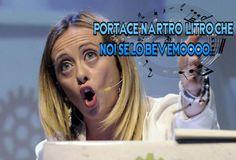 #Vignettismo