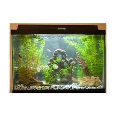 ~~50 Unusual Things You can Recycle from A-Z~~  A: Auarium: A dusty, old fish tank can be cleaned and shined to be converted into an herb garden. All you have to do is to spread a layer of gravel and add potting soil. Then transfer herbs into the transparent new home. +++ Many more clever ideas!