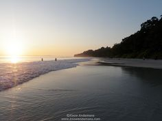 Havelock Island | Know Andamans Havelock Island, Port Blair, Andaman And Nicobar Islands, South India, Travel Information, Goa, Kerala, Tourism, Beach