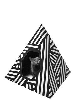 Geo Cat Playhouse
