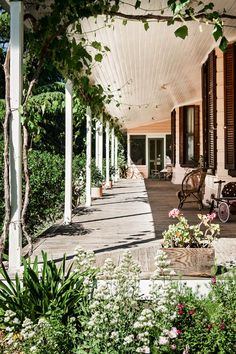 A typical old Australian homestead surrounded by a rambling country garden … you see a lot of farmhouses/gardens like this in rural Australia. photos by michael wee for country style au 'Clair Matin' shrub rose xx debra via homelife