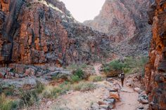 Bright Angel Trail, Grand Canyon National Park, AZ