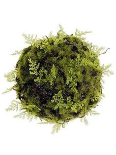 Moss kissing ball in green with fern accents. Measures 6 inches in diameter. Give your wedding a touch of elegance with natural accents..
