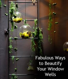 1000 Ideas About Window Well On Pinterest Egress Window